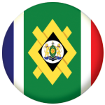 Johannesburg Flag 25mm Flat Back